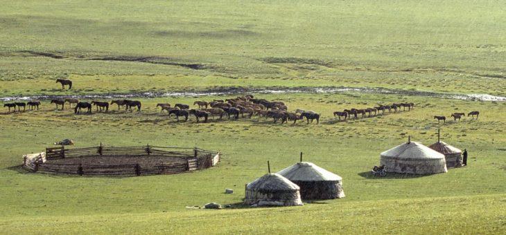 Mongolie, un pays à visiter en 2018